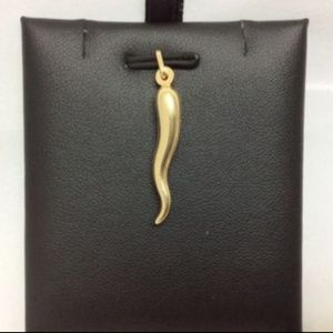 Jewelry - 14k Gold Italian Horn pendant